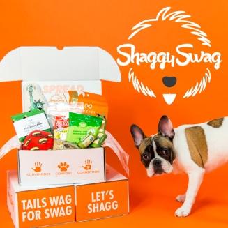 shaggyswag banner